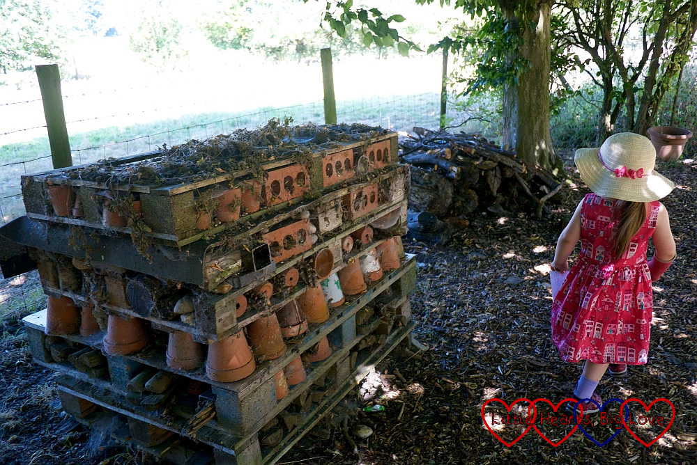 Sophie passing the bug hotel