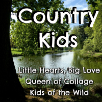 Country Kids linky