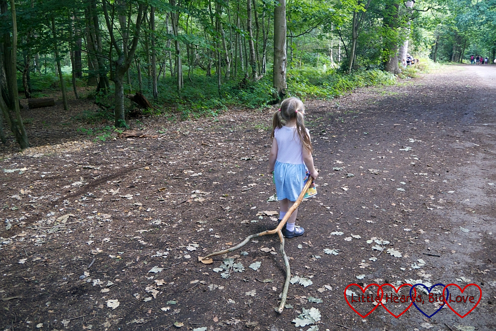 Sophie dragging a huge stick behind her