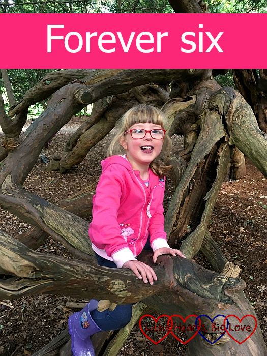 """Jessica sitting in a tree at Langley Park - """"Forever six"""""""