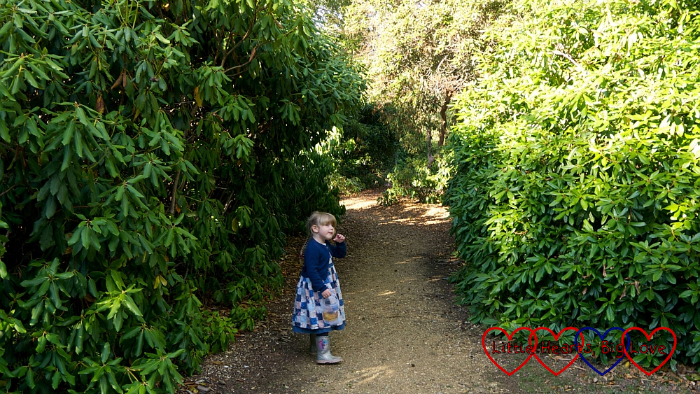 Sophie heading down one of the paths in the Temple Gardens at Langley Park