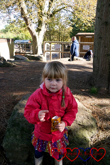 Sophie with her treat at the end of The Trick or Treat Woods
