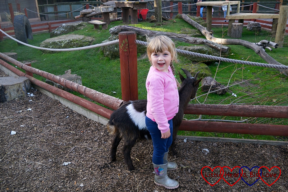 Sophie with one of the pygmy goats in the children's zoo