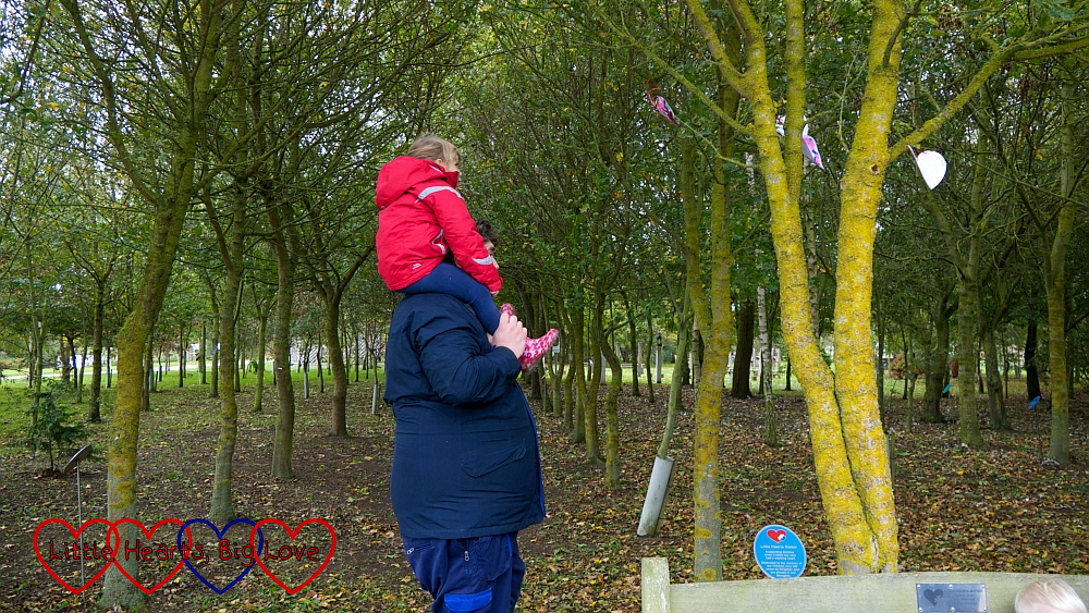 Sophie sitting on hubby's shoulders looking at the hearts in the Little Hearts Matter tree