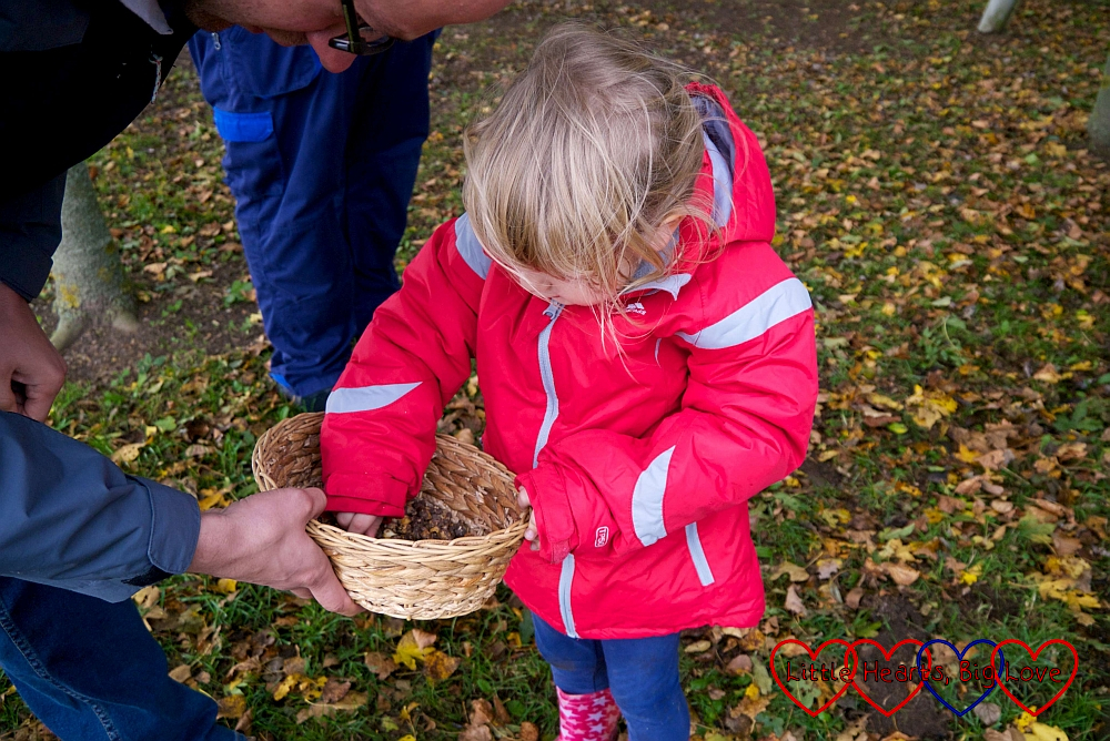 Sophie selecting her bulbs from the basket