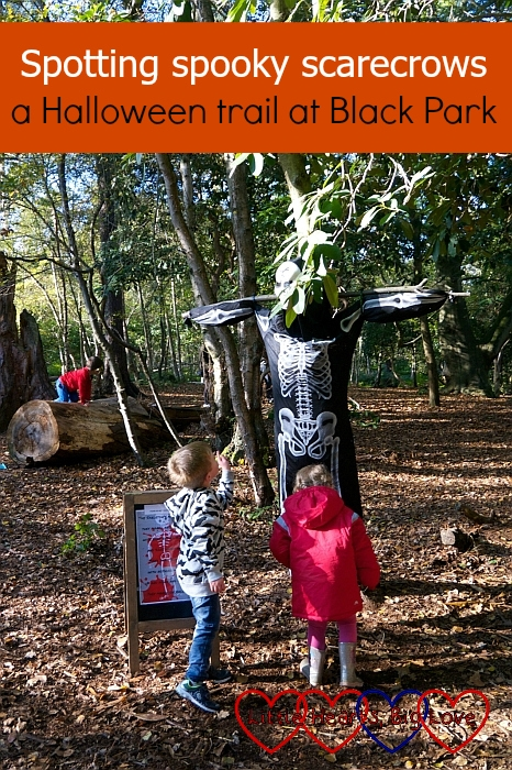 "Sophie and her friend F next to a skeleton scarecrow at Black Park - ""Spotting spooky scarecrows - a Halloween trail at Black Park"""