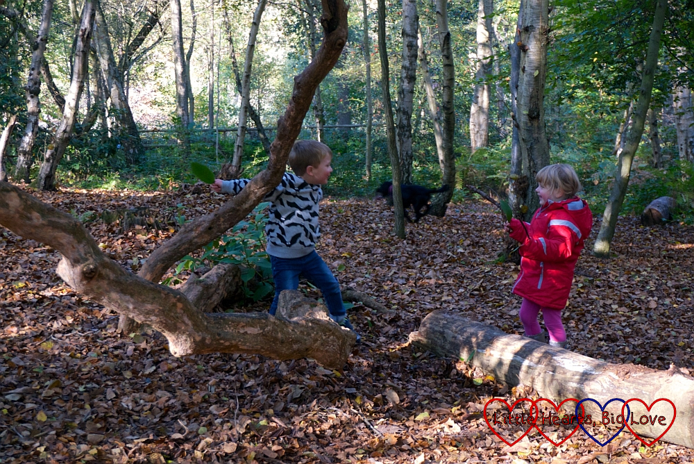 Sophie and F playing shops across a log