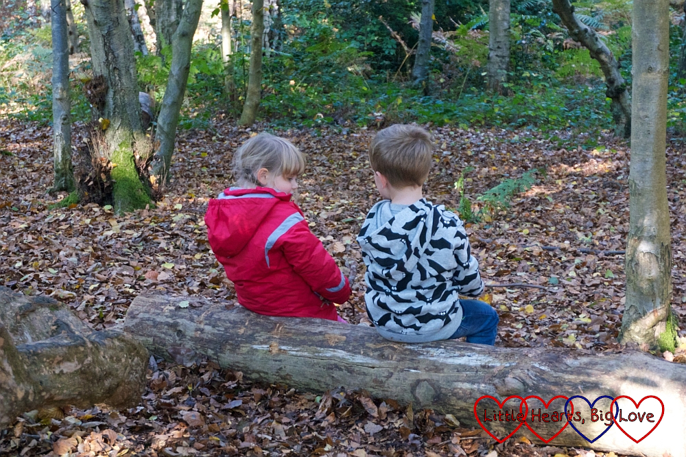 Sophie and F sitting on a log and chatting