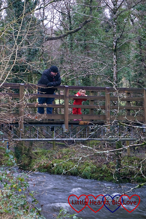 Sophie and Daddy standing on the bridge playing Pooh sticks