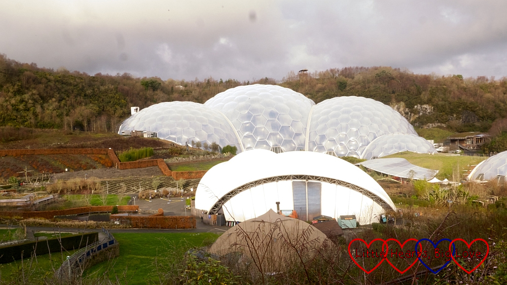 The Rainforest biome at the Eden Project