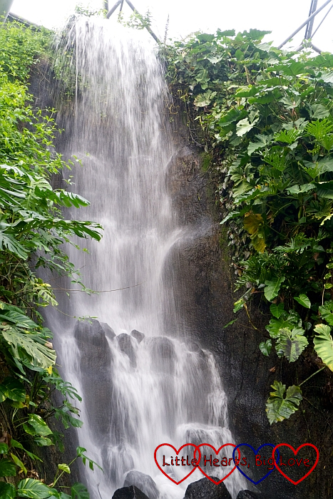 The big waterfall in the rainforest biome