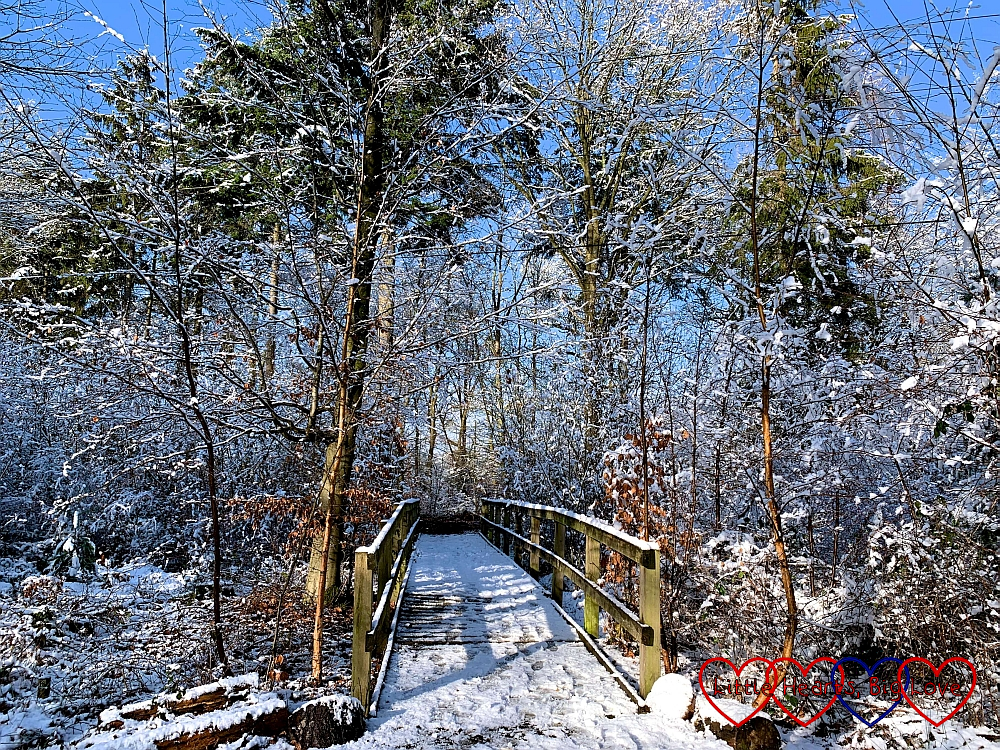 A snow-covered bridge at GreenAcres