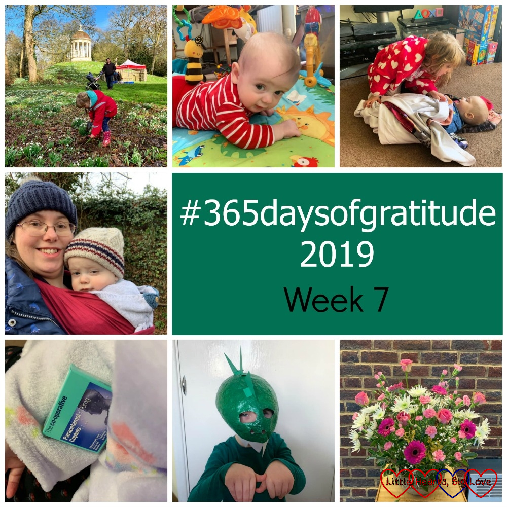 "Sophie planting a snowdrop in memory of Jessica; Thomas lying on his front on his mat; Sophie wrapping Thomas in a blanket; me with Thomas in the sling; paracetamol and a blanket; Sophie wearing her dinosaur head; pink flowers at church - ""#365daysofgratitude 2019 - Week 7"""