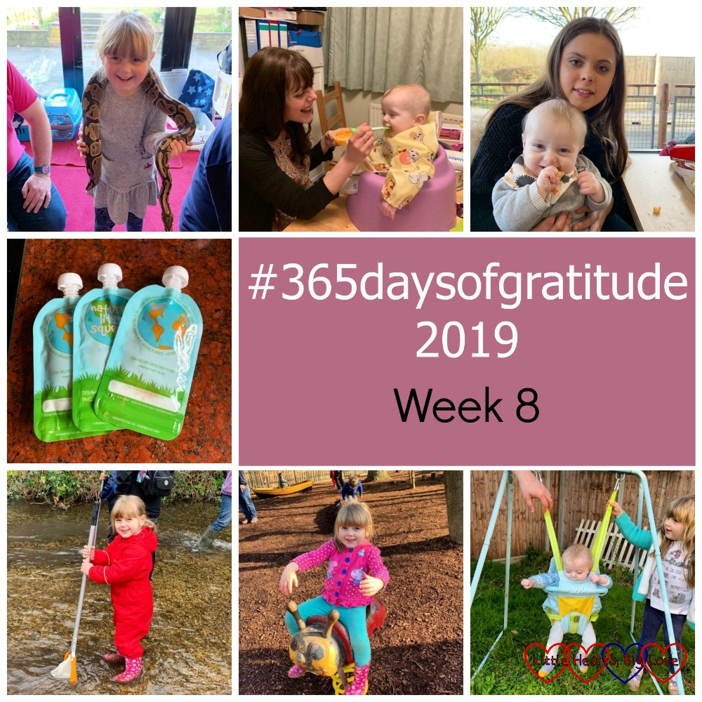 "Sophie holding a snake; my twin sister feeding Thomas; Thomas with his cousin; three reusable food pouches; Sophie doing some river dipping; Sophie on a rocking ladybird; Thomas in the baby swing - ""#365daysofgratitude 2019 - Week 8"""