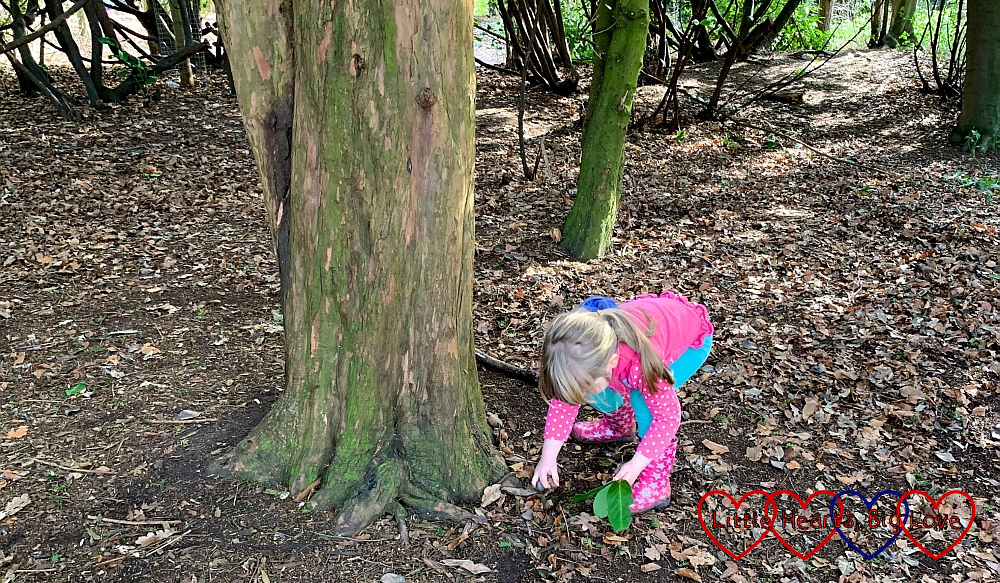 Sophie collecting leaves and pebbles in the woods at Cliveden