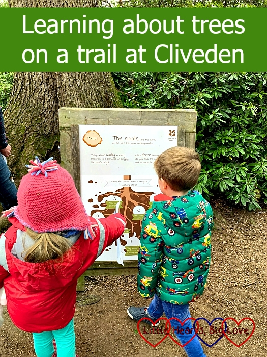 "Sophie and F looking at an information board about roots – ""Learning about trees on a trail at Cliveden"""