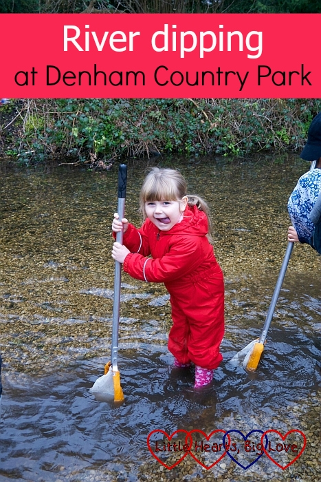 """Sophie standing in the river with her net in the water – """"River dipping at Denham Country Park"""""""