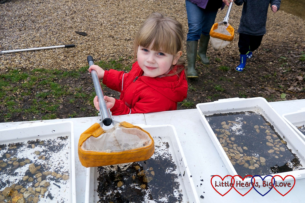 Sophie emptying her net into one of the trays