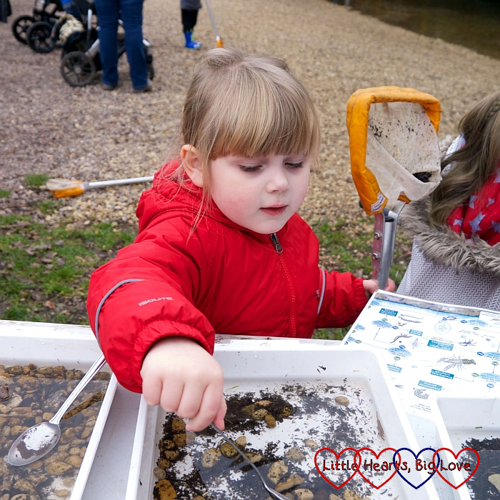 Sophie using a spoon to take a closer look at the creatures in the tray