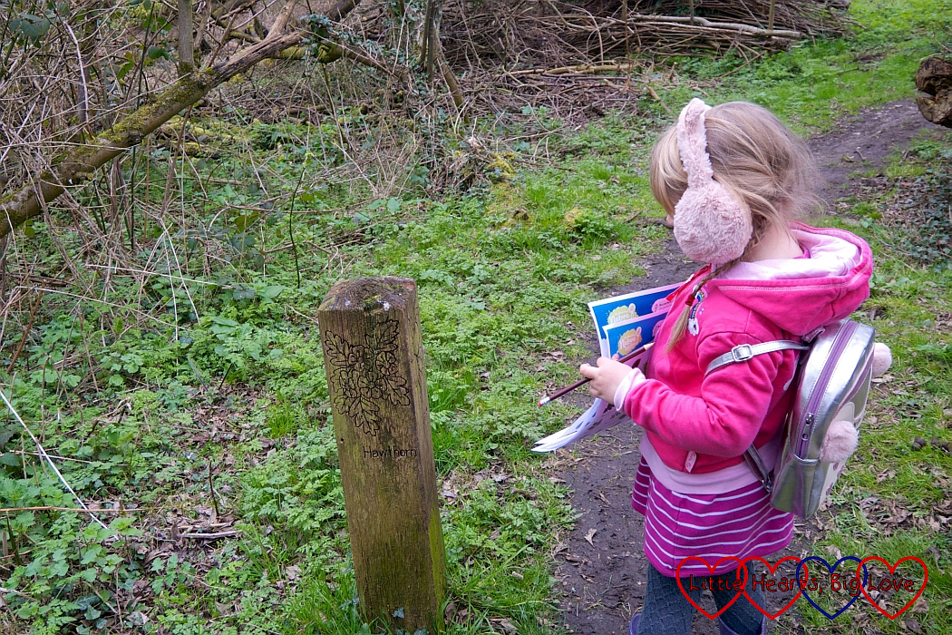 Sophie looking at a wooden post with hawthorn leaves carved into it