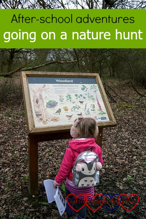 "Sophie looking at a woodland information board – ""After-school adventures: going on a nature hunt"""