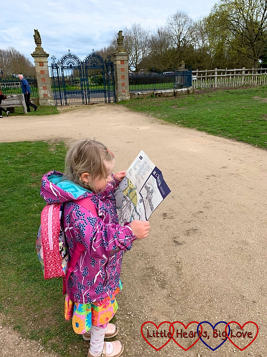 Sophie studying the map of Charlecote Park