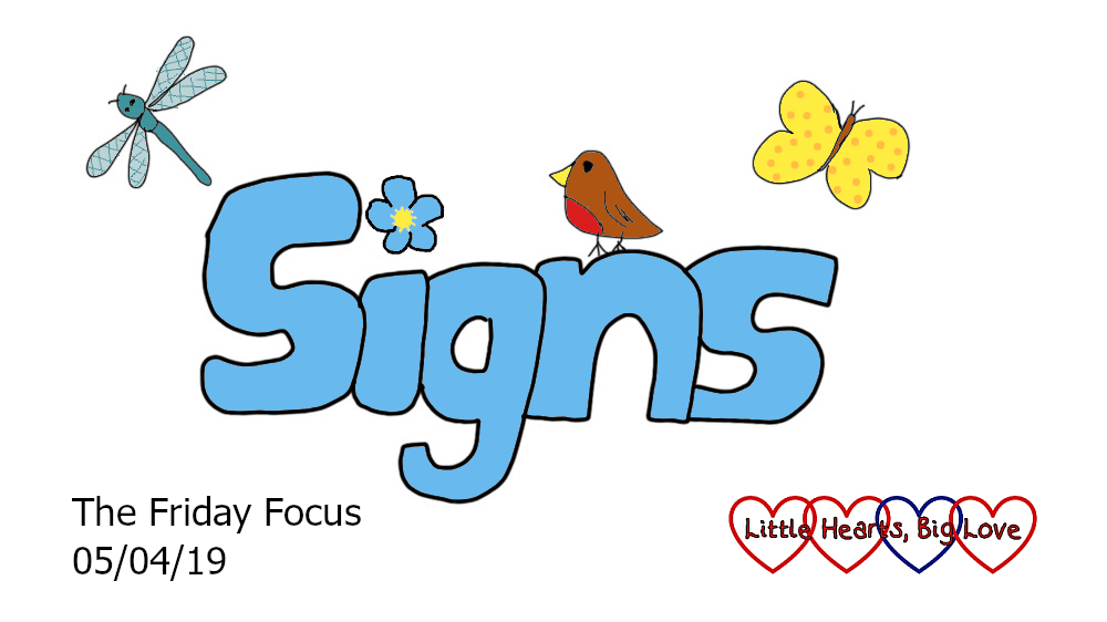 The word 'signs' with a forget-me-not over the 'I', a little robin, butterfly and dragonfly