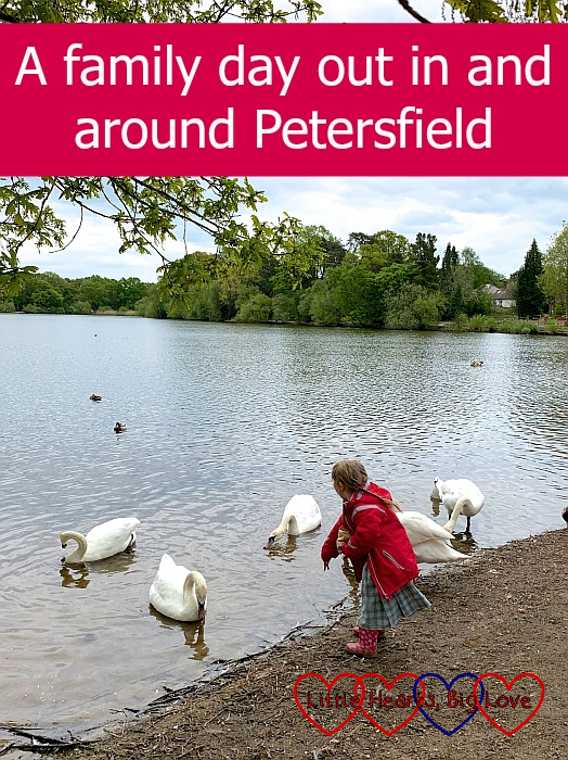 "Sophie feeding swans on Petersfield Heath lake - ""A family day out in and around Petersfield"""