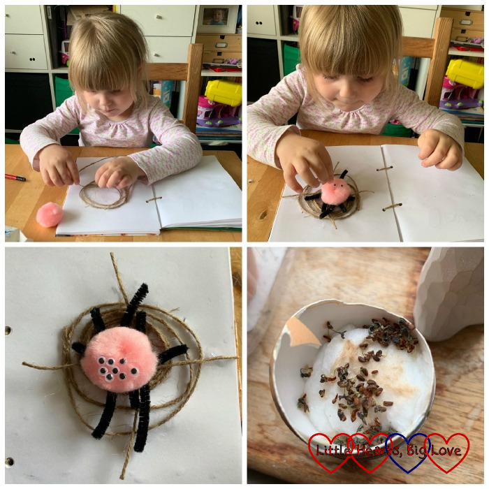 (top) Sophie making a web with string; Sophie putting eyes on her pompom spider; (bottom) the finished spider on the web; cress seeds in an egg shell