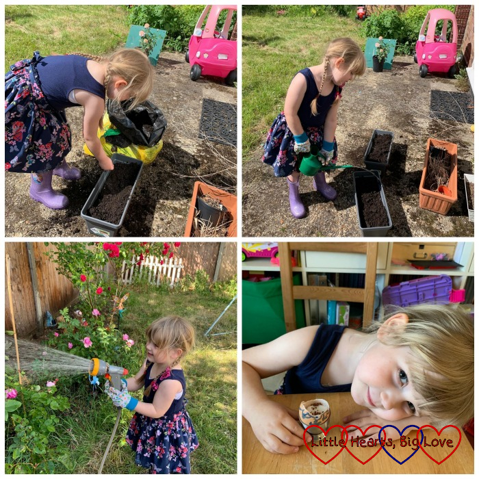 Sophie planting seeds; Sophie watering the seeds; Sophie watering the roses; Sophie with her egg with cress seeds inside