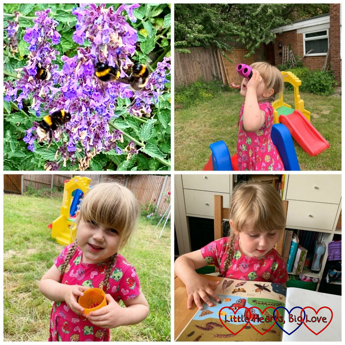 Bees on the flowers at Hughenden Manor; Sophie looking through her binoculars; Sophie with a pot of wild strawberries; Sophie putting stickers in her nature sticker book
