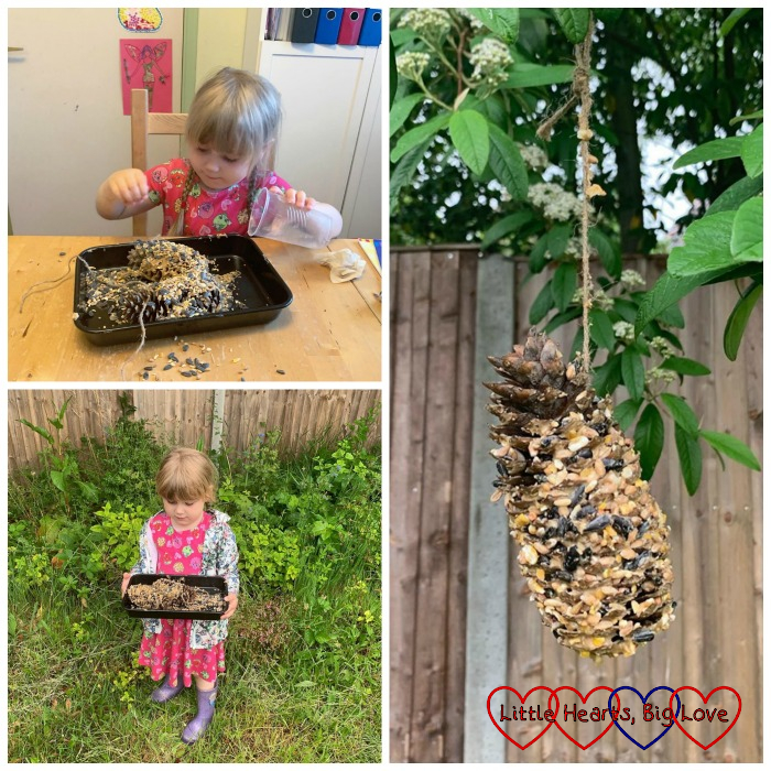 Sophie rolling peanut-butter covered pine cones in bird seed; Sophie with a baking tray containing two pine-cone bird feeders; the pine-cone bird feeder hanging in a tree
