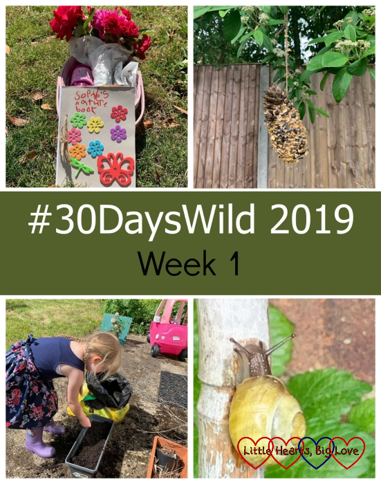 "Sophie's nature journal; a pine-cone bird feeder; Sophie planting seeds and a snail on a bamboo cane - ""#30DaysWild 2019 - Week 1"""