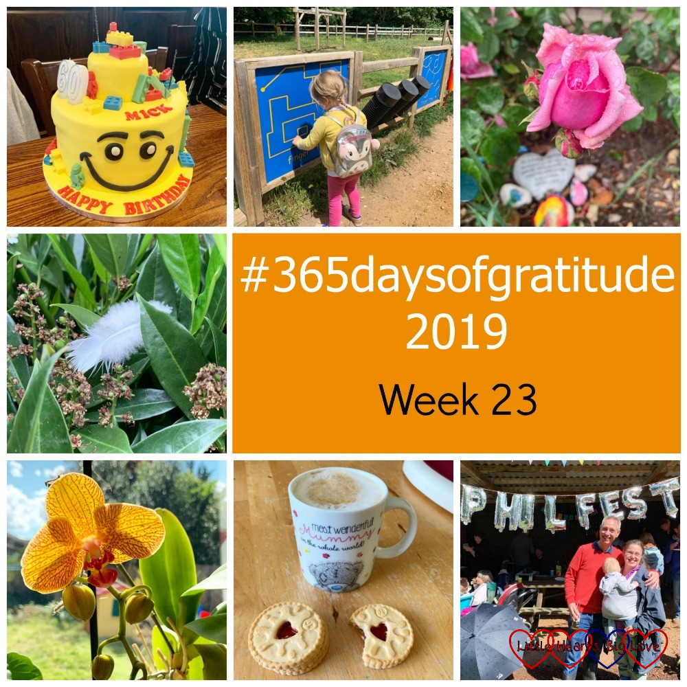 "My brother-in-law's ""Lego head"" birthday cake; Sophie playing in the outdoor music area of the play area at Denham Country Park; a Pretty Jessica rose with raindrops on it; a white feather in a bush; a yellow and red streaked orchid; a cup of coffee with two Jammie Dodger bisuits; me with my friend Phil in front of balloons spelling ""Phil Fest"" - ""#365daysofgratitude 2019 - Week 23"""