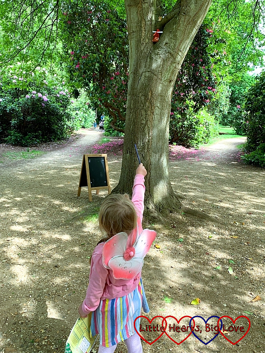 Sophie looking at a bag of coins left in a tree by the tooth fairy