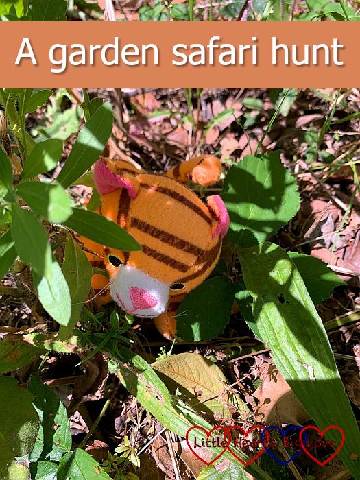 "A soft toy tiger hiding amongst some plants - ""A garden safari hunt"""