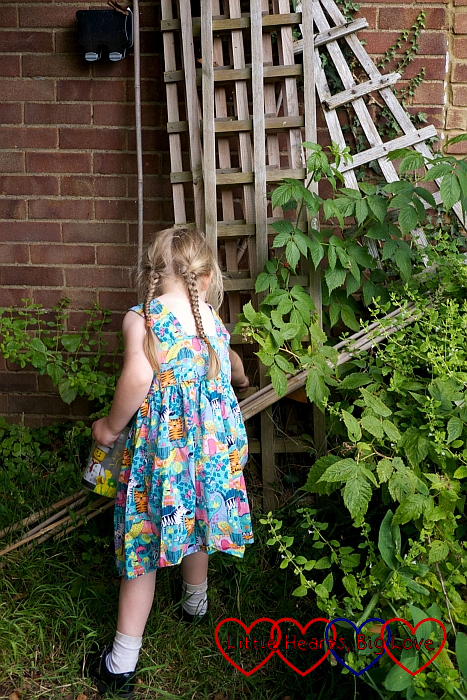 Sophie finding a toy sheep hidden on a trellis