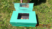 The solar oven in the garden with cookie dough inside