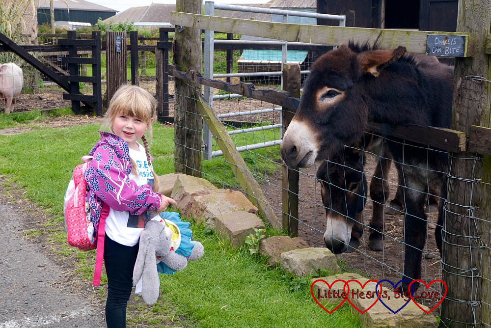 Sophie with one of the donkeys at Puffin Croft petting farm