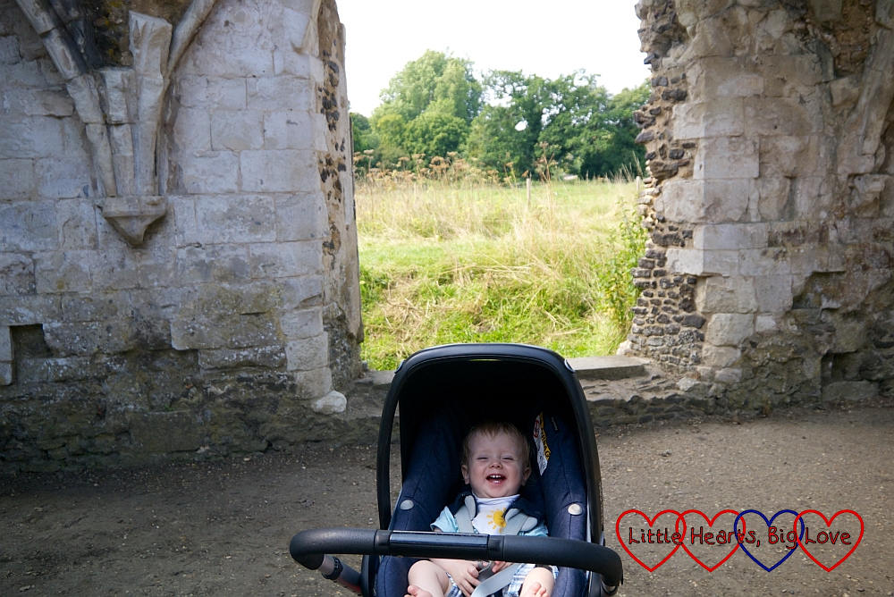 Thomas in his buggy amongst the ruins of Waverley Abbey