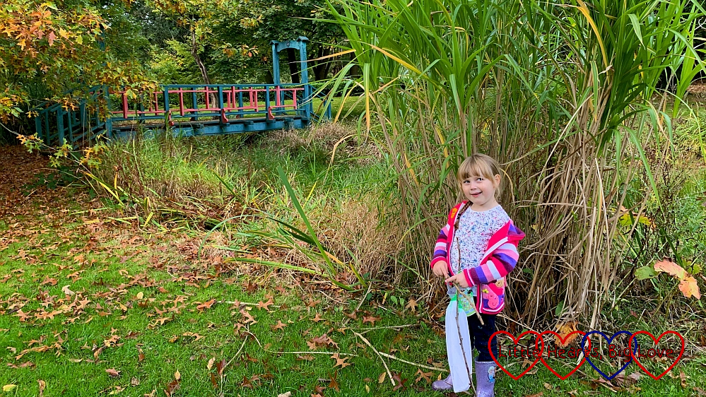 Sophie standing by the bridge in the arboretum at Langley Park