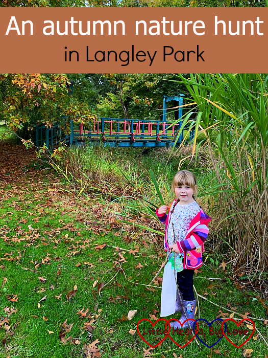 "Sophie standing by the bridge in the arboretum at Langley Park – ""An autumn nature hunt in Langley Park"""