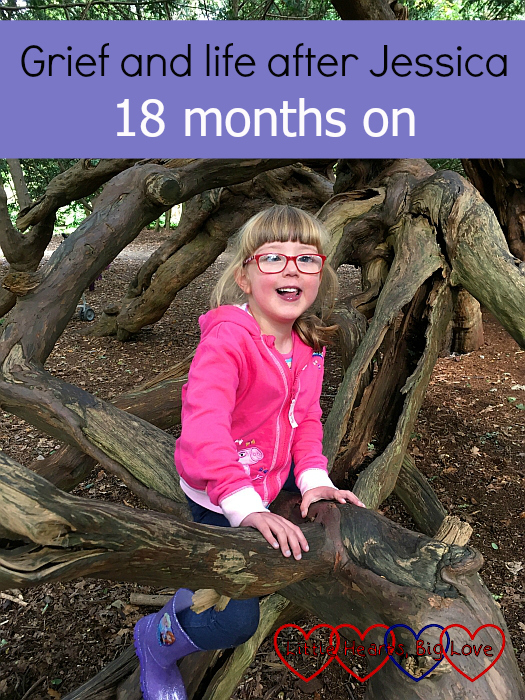 "A smiley Jessica sitting in a tree - ""Grief and life after Jessica: 18 months on"""