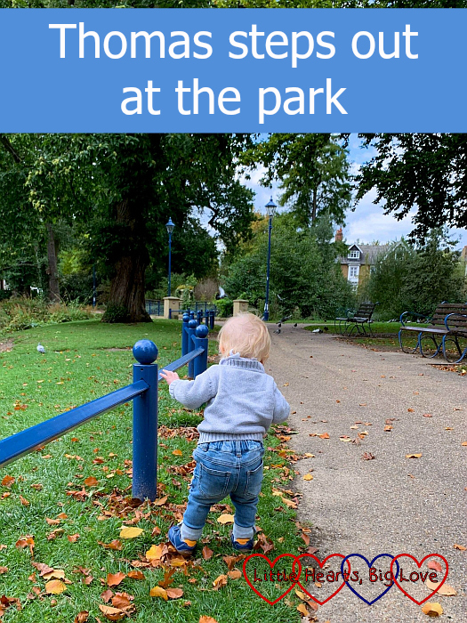 """Thomas going for a walk at Herschel Park - """"Thomas steps out at the park"""""""