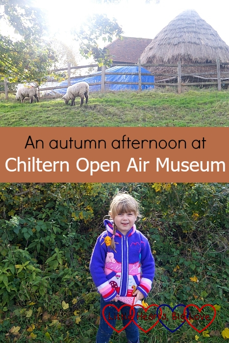 """Sophie standing on the path with sheep from the farm on the grassy slope above her – """"An autumn afternoon at Chiltern Open Air Museum"""""""