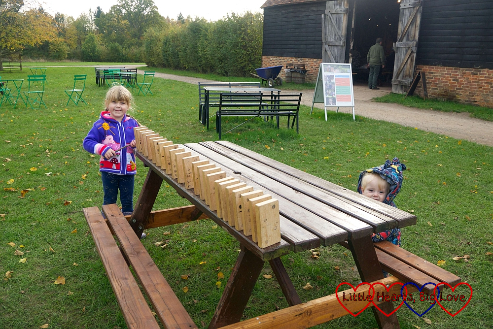 Sophie with a wooden domino rally set up on a picnic bench with Thomas standing holding on to the seat and looking on
