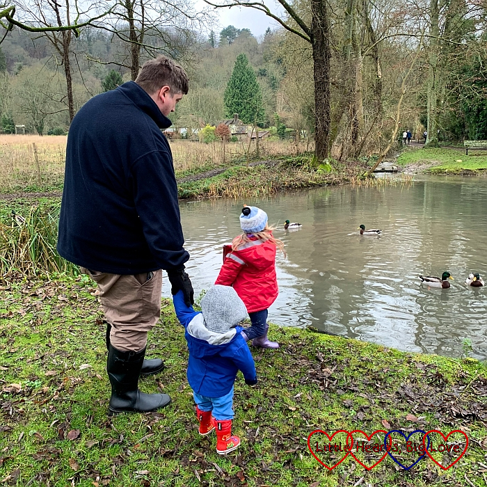 Daddy holding Thomas's hand, watching Sophie feed the ducks