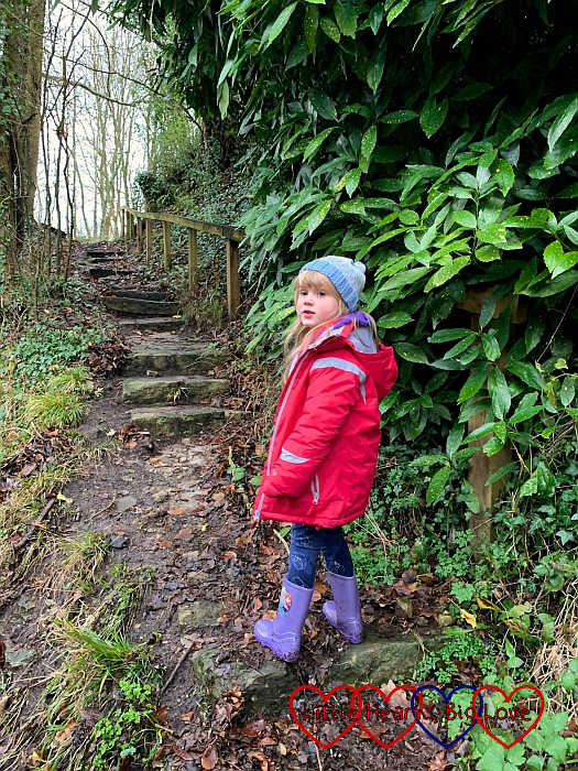 Sophie climbing up steps on the footpath