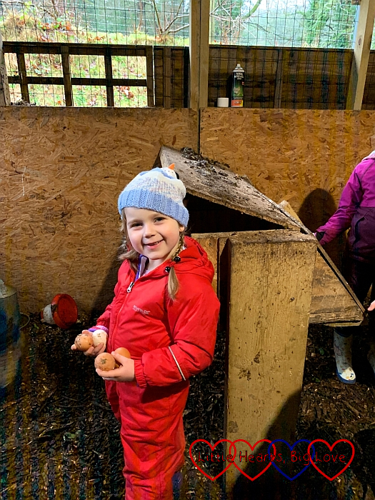 Sophie standing inside the chicken coop, holding four eggs in her hands