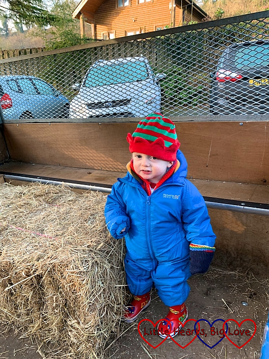 Thomas standing in the trailer next to a bale of hay